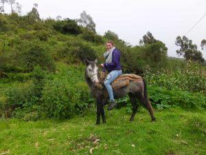 Auf dem Rücken der Pferde liegt das Glück der Erde
